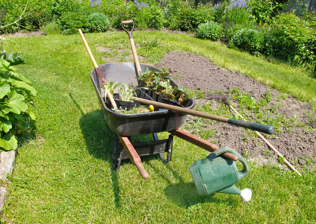 Garden Maintenance The Cleanex